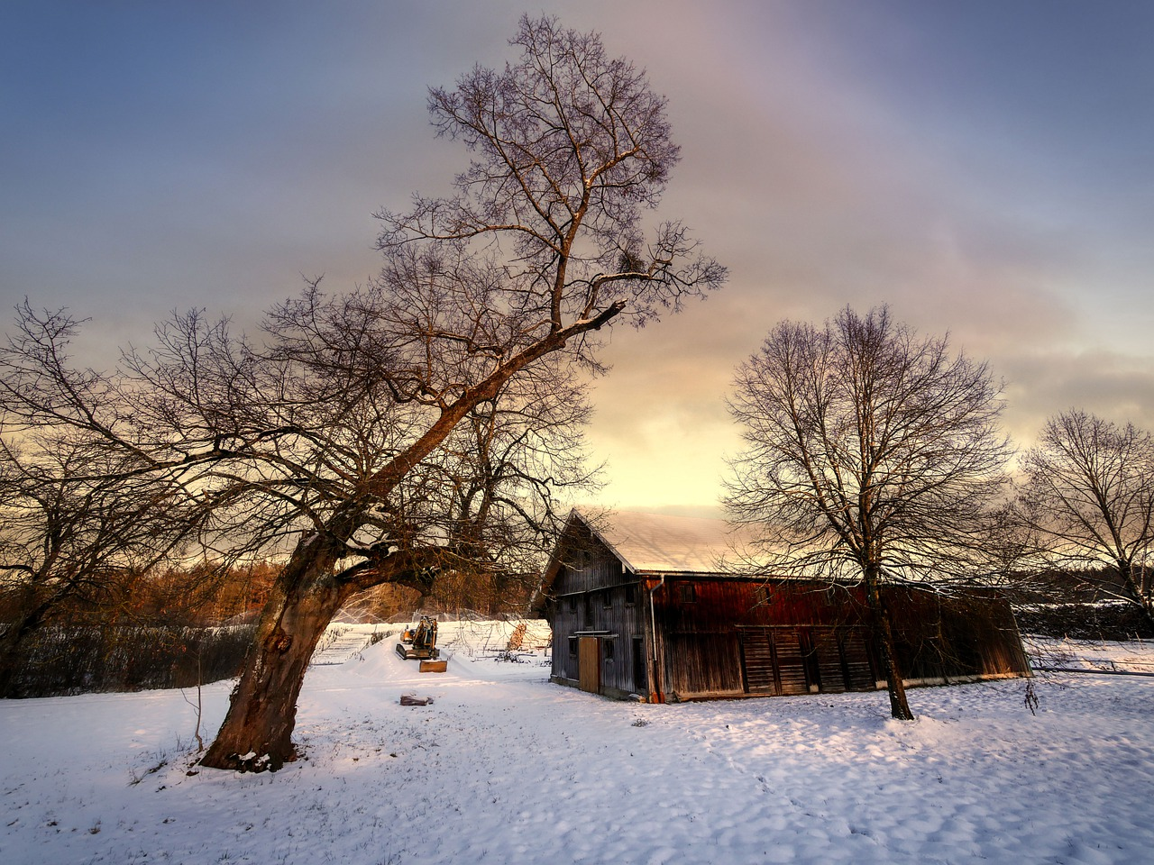 Barn House Trees Snow Wooden House  - fietzfotos / Pixabay